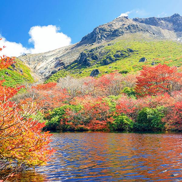 秋山(紅葉)