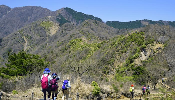 【ケース1】丹沢山に登山した場合