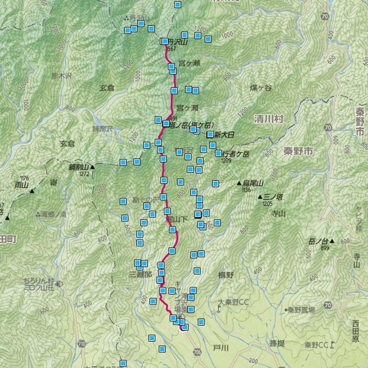 大倉から丹沢山コース